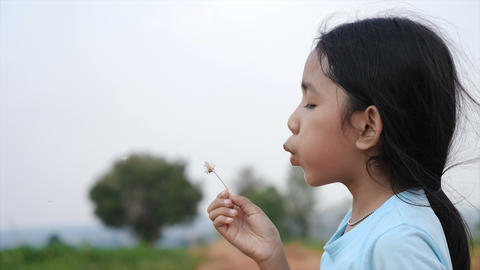 Cute Asian little girl blowing wind to dry meadow flower with happiness Live Action