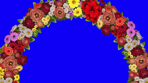 Animation of a rotating ring of flowers on a blue background. Chroma key. Loop video CG動画