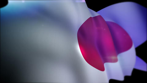 Flappping Banner of Japan in Slow Motion Animation