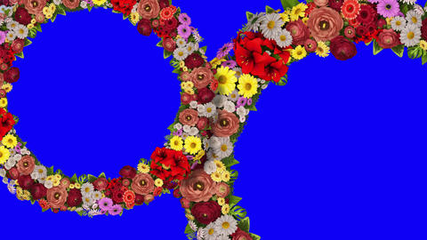 Animation of two swirling rings of flowers on a blue background. Chroma key. Loop video Animation