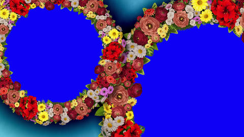 Animation of two rotating rings of flowers on a blue... Stock Video Footage