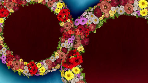 Animation of two rotating rings of flowers on light blue and red background. Loop video Animation
