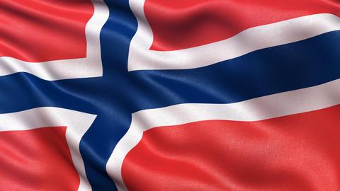 Norway flag seamless loop, Stock Animation