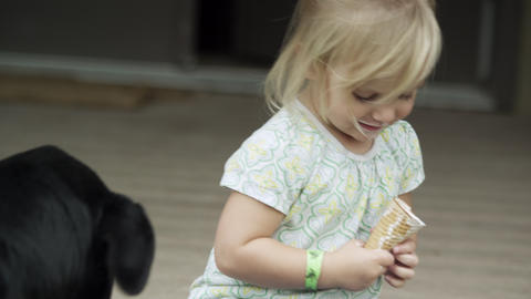 Dog licks the icecream cone of a young girl on the porch Footage