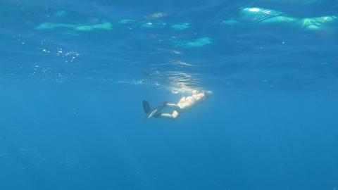 Girl Snorkeling Diving Swimming Underwater In Sea Water GIF