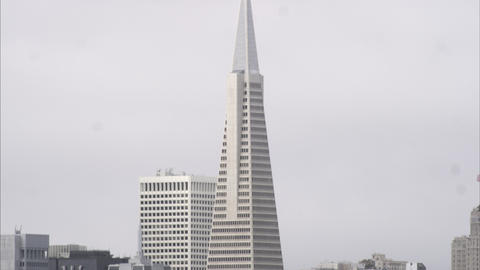 Tilting up shot of the Transamerica building in San Francisco Footage