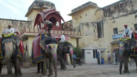 Elephant drivers lead elephant past camera Footage