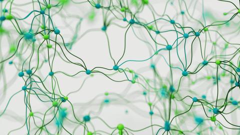 4K Neuronal Activity Footage