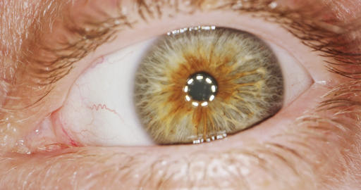 Extreme macro shot of a brown human eye Footage
