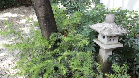 Stone lantern in zen garden Footage