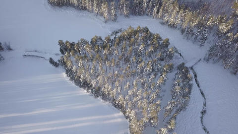 Island with small hiking route bridges in snowy forest landscape Live Action