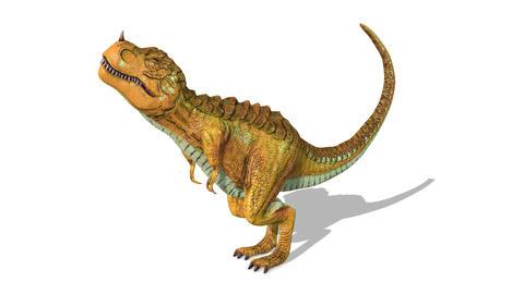 Dinosaur Tyrannosaurus Animation