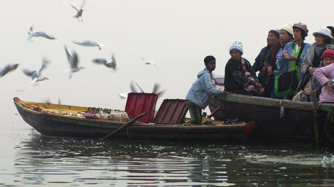 Tight shot of several boats rowing along the foggy Ganges river as seagulls arou Footage