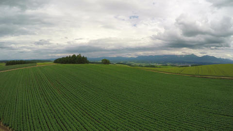 Kamifurano field aerial shoot ビデオ