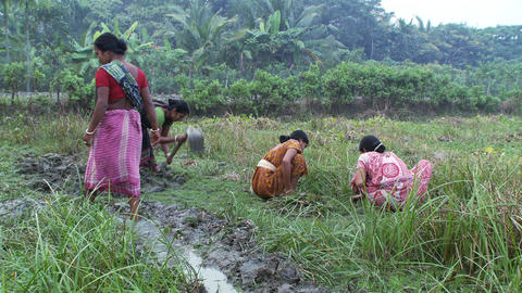 Women cultivating ground and digging irrigation ditch Footage