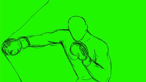 Boxer Throwing Punches Punching Bag Drawing 2D Animation Animation