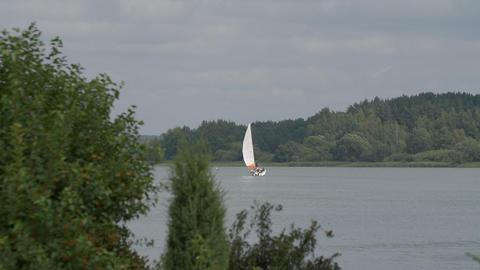 Sailing yacht regatta floating on lake, green forest on horizon Footage