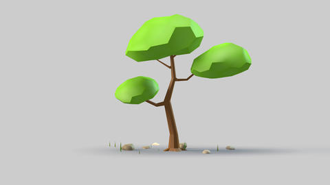Tree 3d design with garden motion.Cute plant on gray background Animation