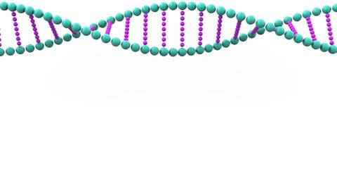 DNA molecule ball model falls and breaks. Genetic disease or research analysis Footage