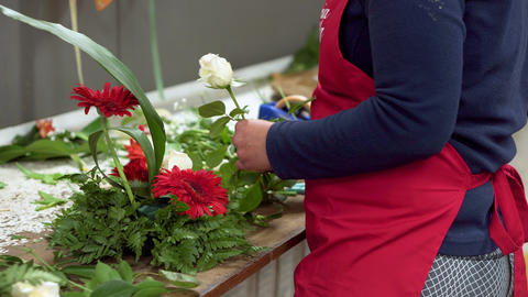 Close up of of woman florist creating bouquet of flowers Footage