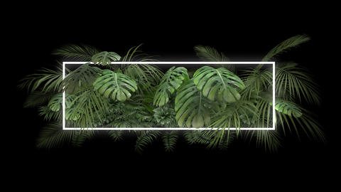 Tropical plant with neon light on an alpha channel Animation