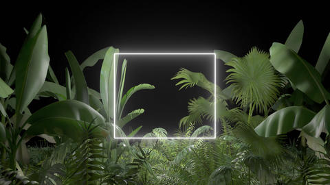 Tropical plant with neon light on an black background GIF
