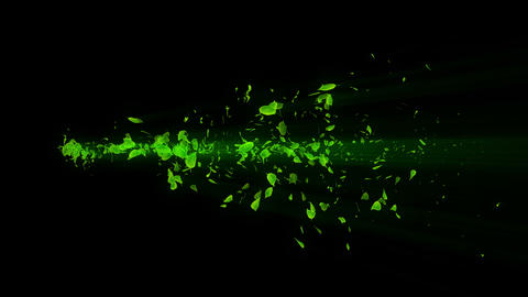 Vortex from green leaves. Spiral shiny particle of... Stock Video Footage