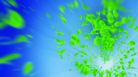 Vortex from green leaves. Spiral shiny particle of…, Stock Animation