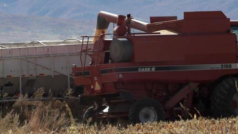 Combine emptying corn into a bin Footage