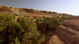Aerial view of trees at the side of a mountain in the Moab Desert in Utah with l Footage