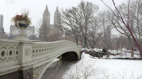 Static view of the Bow Bridge in Central Park New York Footage