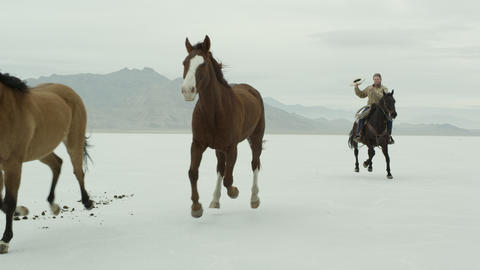 Horses running with a cowboy riding across salt flats Footage