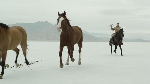 Horses running with a cowboy riding across salt flats Footage