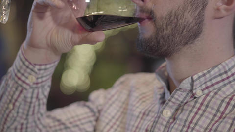 Portrait of half face of a bearded guy drinking wine close up Live Action