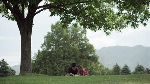 Slow motion view of dad and daughter under tree reading a book Filmmaterial