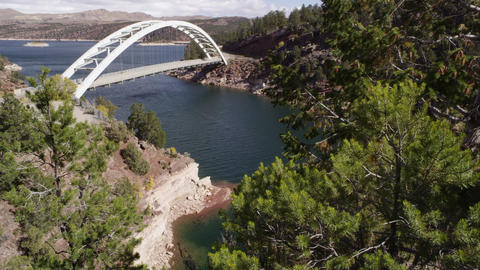 Slow upward pan from the trees up to Cart Creek Bridge at Flaming Gorge in Utah Footage