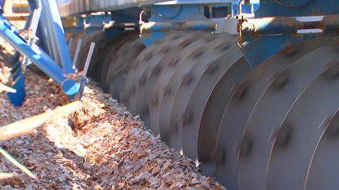 The grinding of wood chips in a metal drum chipper for wood Archivo