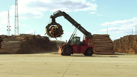 Forklift carries in metal grips firewood, solid fuel for boilers Live Action