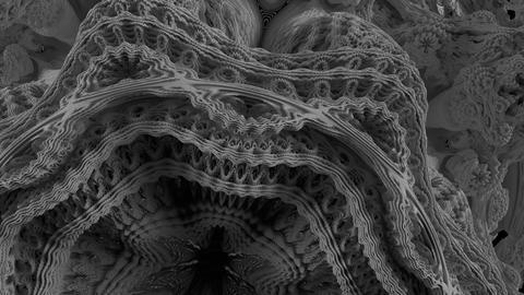 4K Abstract Expanding Fractal Pattern Live Action