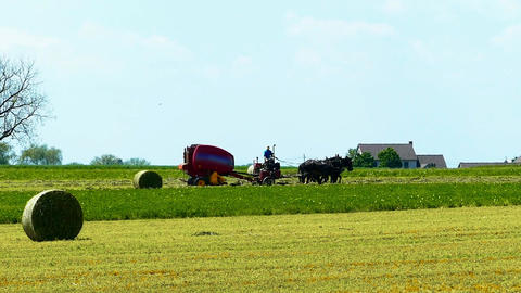 Amish Farm Worker Harvesting the Fields with old and New Equipment Footage