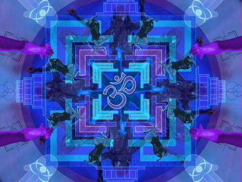 BLUE OHM mandala Stock Video Footage