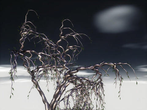 Ghost Tree Animation