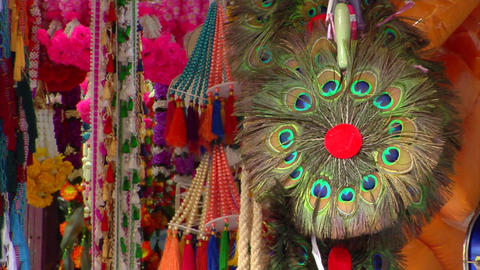 Indian Peacock Feathers Stock Video Footage
