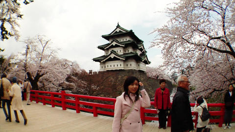 Tourists Taking Photos Of Sakura Footage