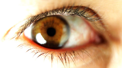 big_eye03 Footage