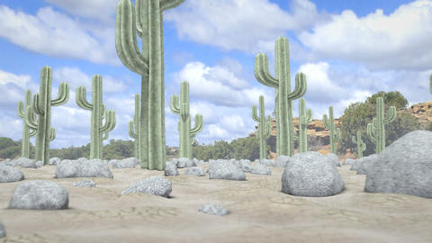 Desert Journey stock footage