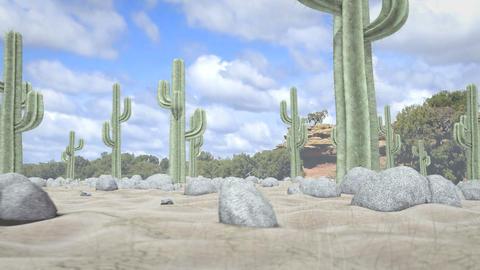 Desert Journey Stock Video Footage