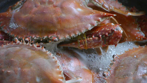 Cooking Steamed delicious crabs in boiling foam Footage