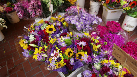 San Francisco flower market Footage