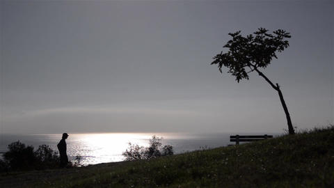 Man walks on the seashore at sunset and sits on a bench under a tree 03 Footage